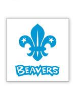 2015_Beavers